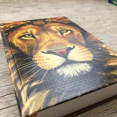 Bíblia Sagrada - Naa - Letra Grande - Leão De Juda