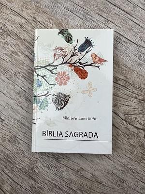 Bíblia Sagrada - Olhai para as aves do céu - ARC - Letra Normal