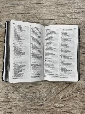 Bíblia Teu Reino - NVI - Letra Normal - Capa Flexível