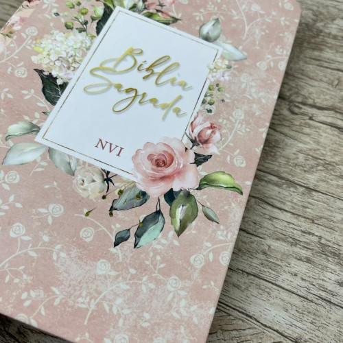 Kit Lisa Bevere + Bíblia