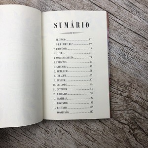 Livro Virtuosa - Naney Wilson