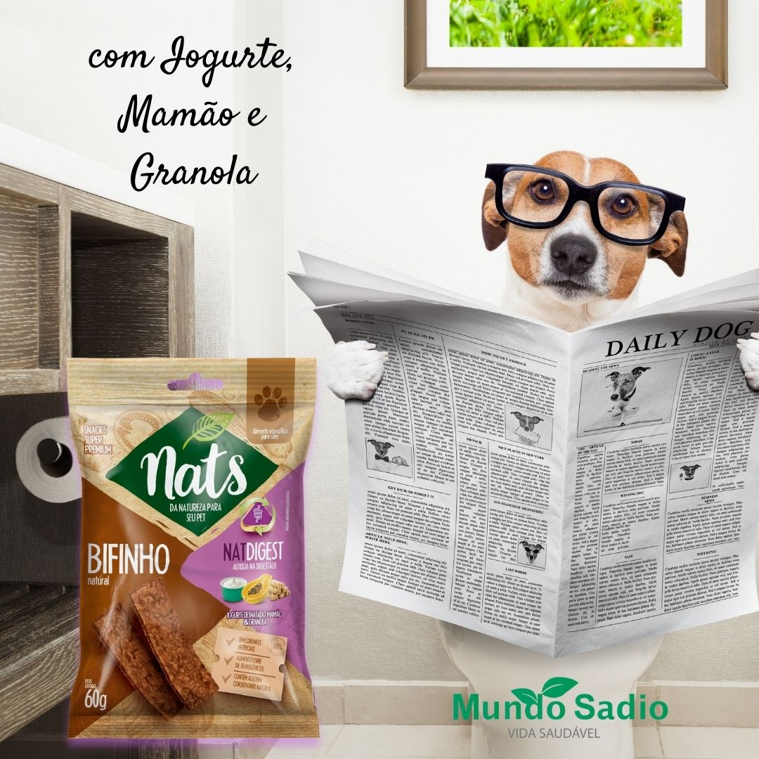 BIFINHO NATURAL PARA CÃES NATDIGEST 60G - NATS