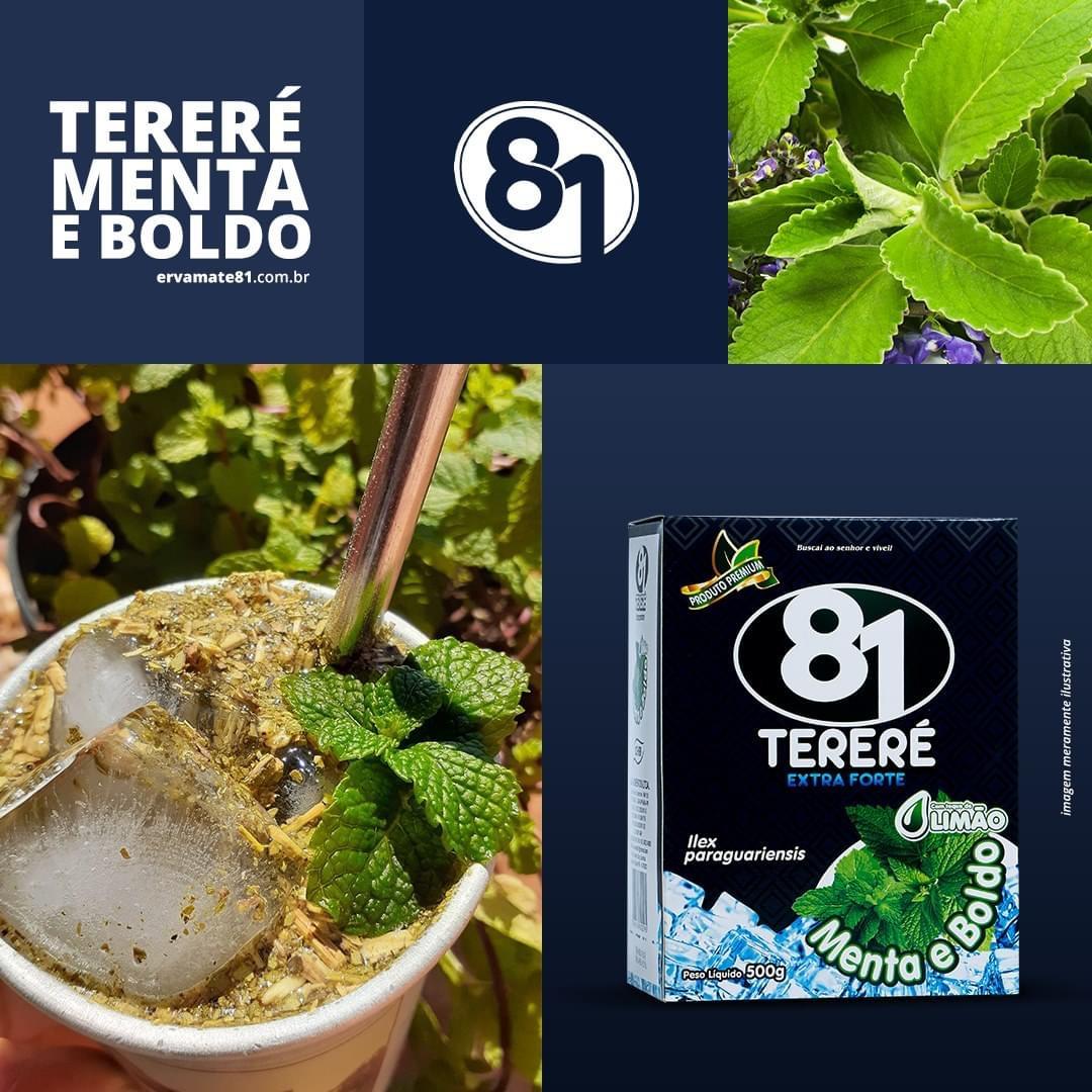 ERVA PARA TERERÉ MENTA E BOLDO (EXTRA FORTE) 500G - MATE 81