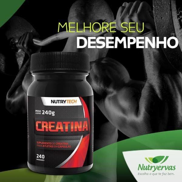 CREATINA NUTRYTECH 240 CÁPSULAS - NUTRYERVAS