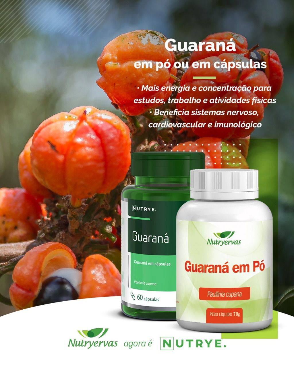 SUPLEMENTO ENERGÉTICO GUARANÁ 60 CÁPSULAS - NUTRYE