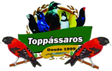 Top Pássaros