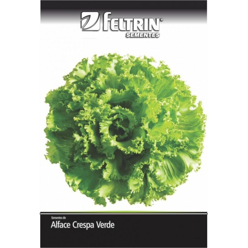 Alface Crocantela - contém 5 grama(s) de semente(s)