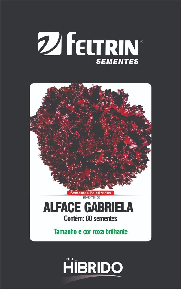 Alface  Gabriela - contém 80 sementes Peletizada(s)