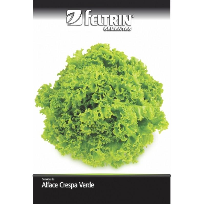 Alface Grand Rapids - contém 700 miligrama(s) de semente(s)