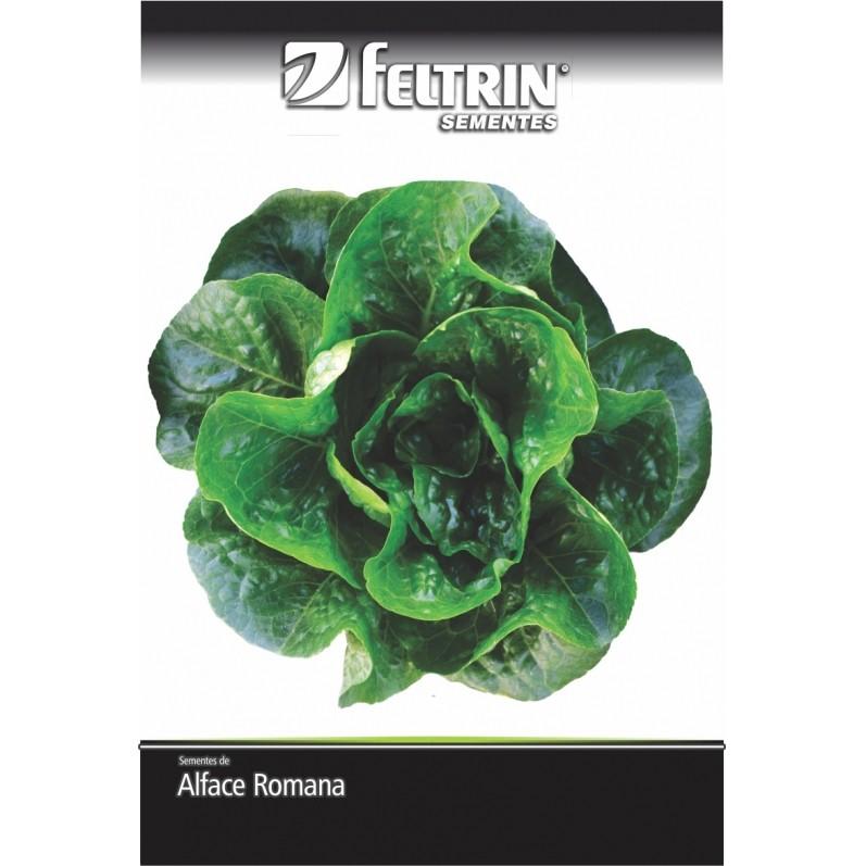 Alface Luiza - contém 700 miligrama(s) de semente(s)
