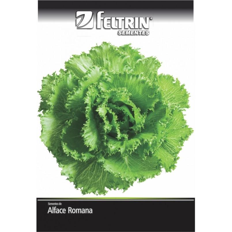 Alface Romanela - contém 5 grama(s) de semente(s)