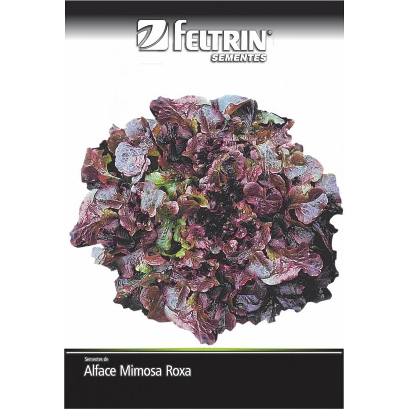 Alface Roxa Salad Bowl - contém 5 grama(s) de semente(s)