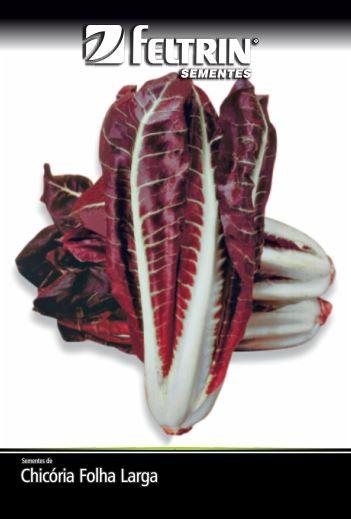 Chicória Rossa Di Piemonte - contém 10 grama(s) de semente(s)