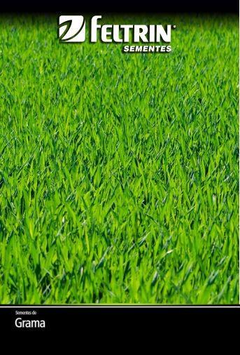 Grama São Carlos Para Jardim - contém 2 grama(s) de semente(s)