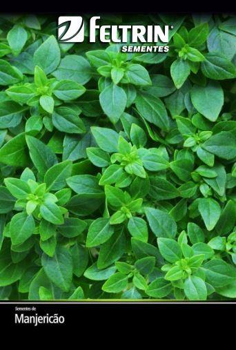Manjericão Pireu - contém 250 miligrama(s) de semente(s)