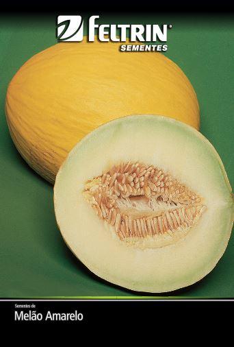 Melão Amarelo - contém 5 grama(s) de semente(s)