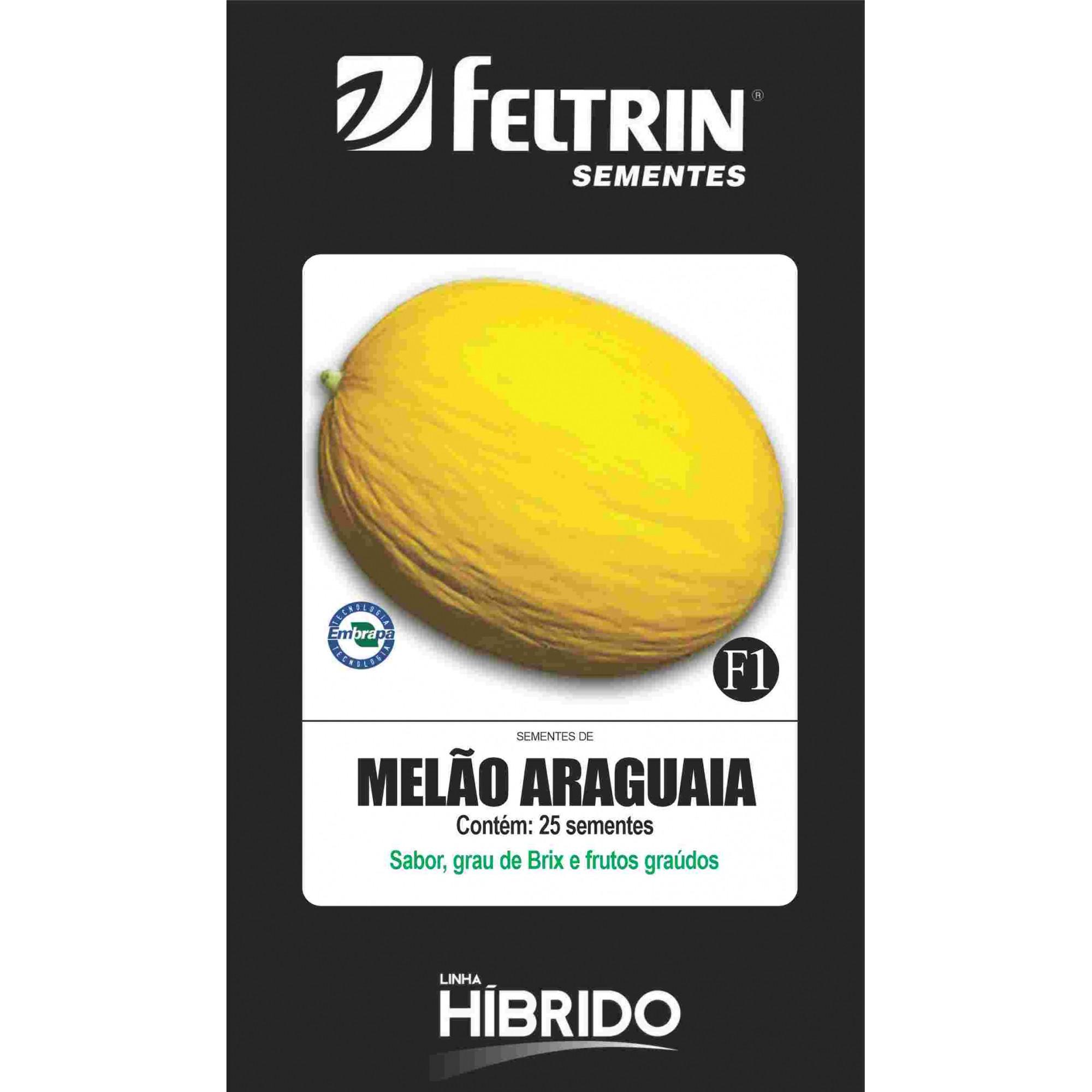 Melão Brs Araguaia - contém 25 sementes