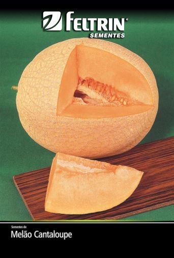 Melão Hales Best Jumbo - contém 5 grama(s) de semente(s)
