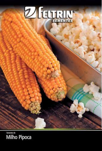 Milho-Pipoca Pipoca Americano - contém 3 grama(s) de semente(s)