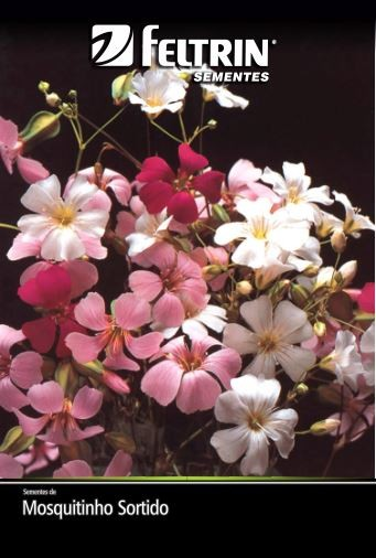 Mosquitinho Sortido - contém 320 miligrama(s) de semente(s)