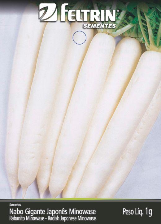 Nabo Japonês Minowase - contém 1 grama(s) de semente(s)
