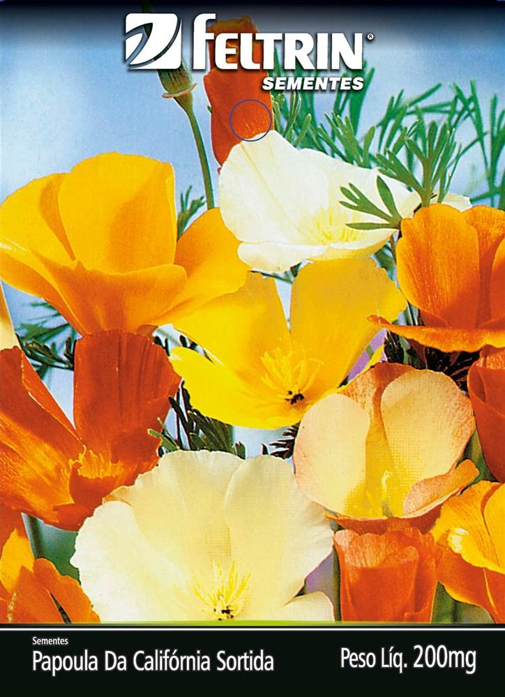 Papoula-Da-California Sortida - contém 200 miligrama(s) de semente(s)