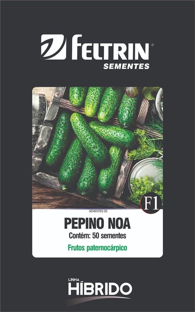 Pepino Noa - contém 50 sementes