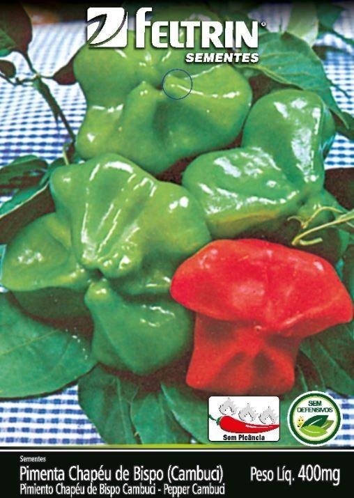 Pimenta Chapeu De Bispo Cambuci - contém 400 miligrama(s) de semente(s)