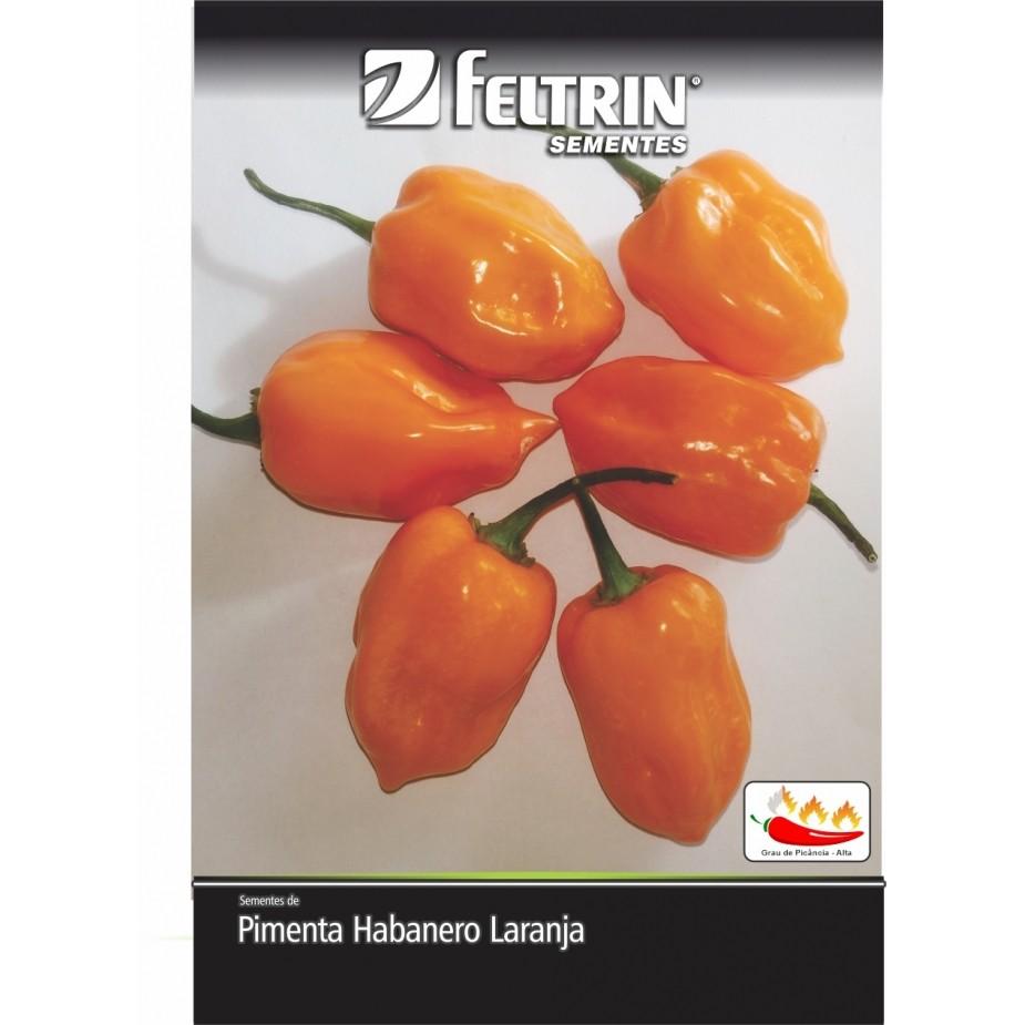 Pimenta Nandaia - contém 400 miligrama(s) de semente(s)