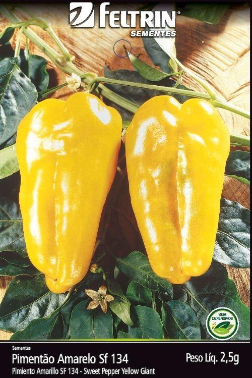 Pimentão Amarelo - contém 2,5 grama(s) de semente(s)