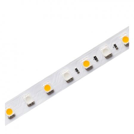 FITA LED EVO 5 METROS IP20 RGBW 12W/M 24V | STELLA STH6830/RGBW