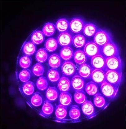Lanterna Uv 21 Leds Ultra Violeta - Dinheiro Falso Luz Negra