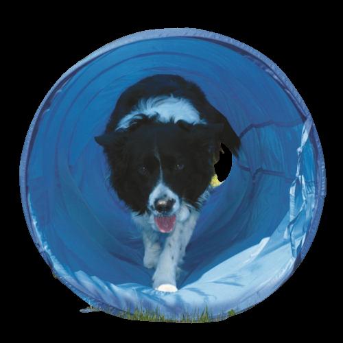 Kit Pet Place Condomínio - Bemboladas