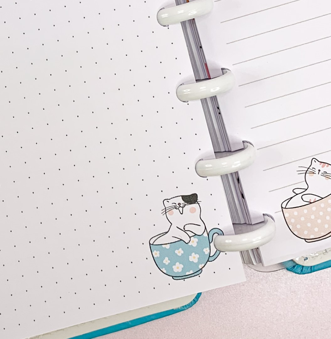 Refil Cat in a Cup Grande - ESCREVA sua OPÇÃO!