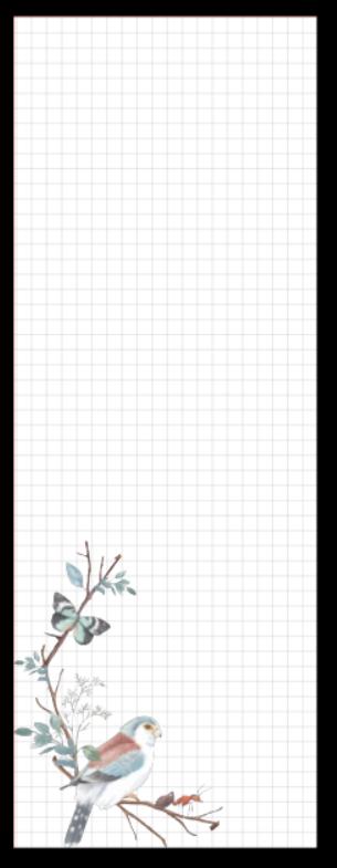 Refil Meia Página Médio (9 furos) - Pássaros