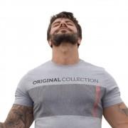 Camiseta OC Vertically Mescla