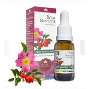 Óleo Vegetal Rosa Mosqueta - Consultar frete no  whatsApp (34) 9 9103-2567