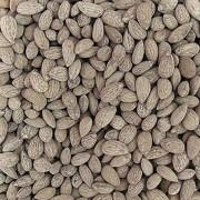 Amêndoa Torrada Salgada (Granel 100g)