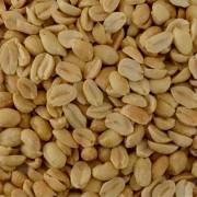 Amendoim Torrado S/Pele com Sal (Granel 100g)