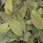 Louro Folhas ( Granel 100 g )