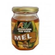 Mel puro laranjeira pote vidro 300g