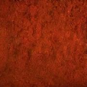 Paprica Doce (Granel 100g)