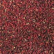 Pimenta Rosa Grãos (Granel 100g)