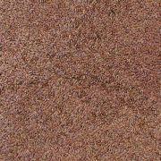 Semente de Linhaça Marrom ( Granel 100g )