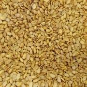 Soja Crocante Natural com Sal (Granel 100g)