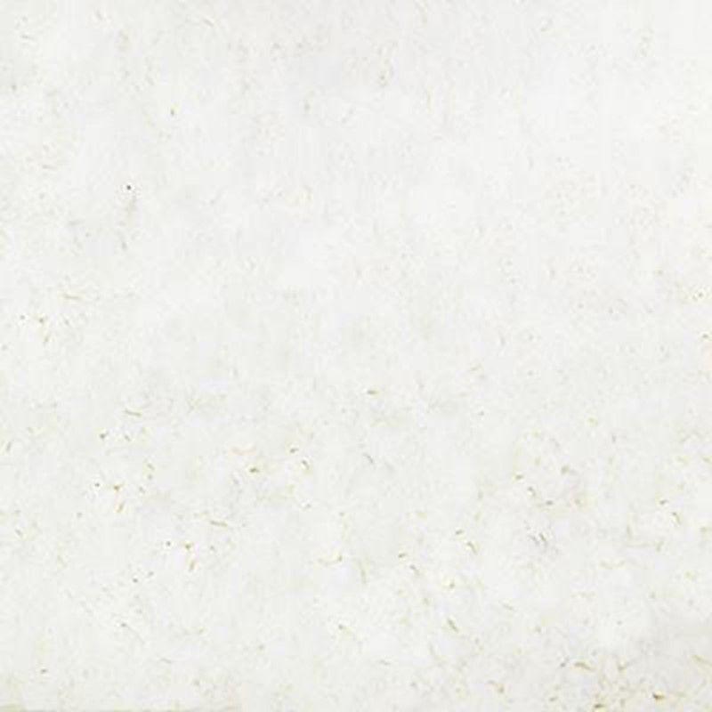 Albumina Pura em Pó - Fama Ovos (Granel 100g)