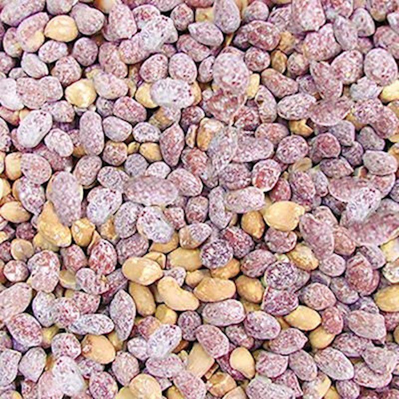Amendoim Cavalo Torrado Salgado (Granel 100g)