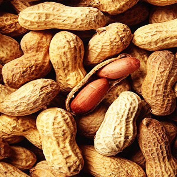 Amendoim com Casca Torrado S/Sal (Granel 100g)