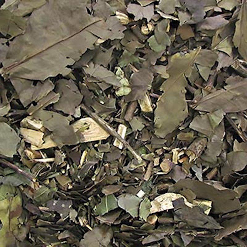 Banchá Folhas (Granel 100g)