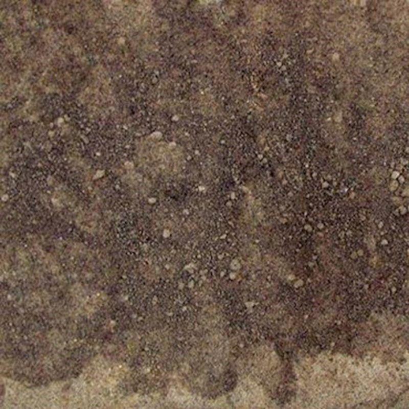 Farinha de Ameixa (Granel 100g)
